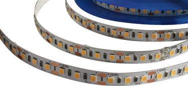 LENTA LED 14.4W 60L48M-WW 12V 3M IP20 (AKTO)