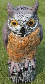 Besk Owl