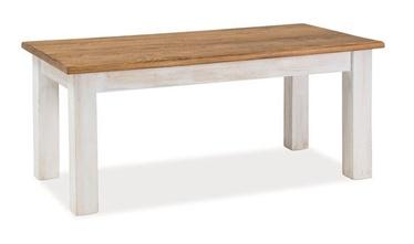 Kafijas galdiņš Signal Meble Poprad, brūna/pelēka, 1200x520x600 mm