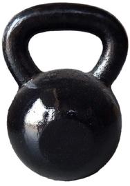 Spartan Cast Iron Dumbbell Kugel 12kg