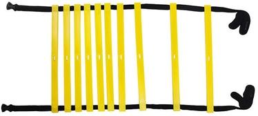 NO10 Training Ladders Black/Yellow 4m
