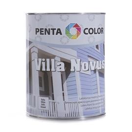 Krāsa fasādēm Pentacolor Villa Novus, 1 l, balta