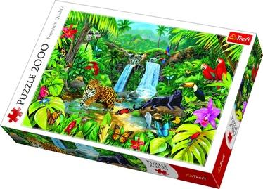 Пазл Trefl Rainforest 27104, 2000 шт.