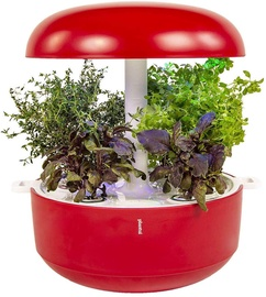 Plantui Smart Garden 6 Red