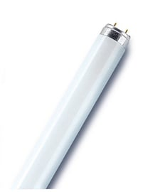 Osram Lumilux Fluorescent Lamp T8 L G13 865 58W Cold White