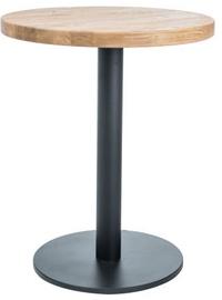 Обеденный стол Signal Meble Puro II Oak/Black, 800x800x760 мм
