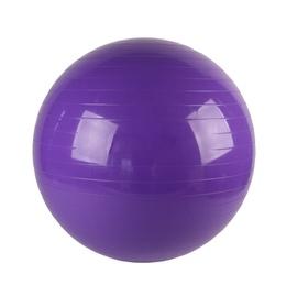 VirosPro Sports Fitness Ball 75cm Purple