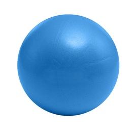 Гимнастический мяч Mini Gym Ball LS3225 Blue 25cm