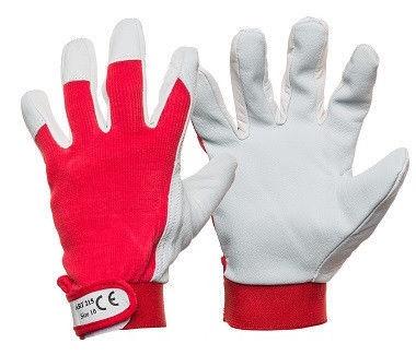 Darba cimdi DD Smooth Pigskin Gloves With Clip 10