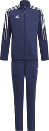 Adidas Tiro Junior Suit GP1026 Navy 164cm