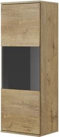 Halmar Nest W-2 Display Cabinet Oak/Black