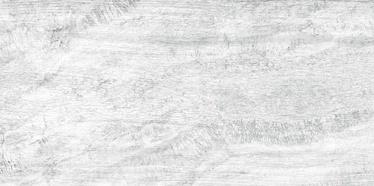 FLĪZES GRES LEGENDA 7 30X60