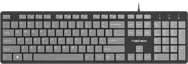 Natec Discus Keyboard Series US Black