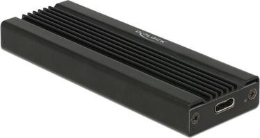 Delock 42600 M.2 USB Type-C External Enclosure