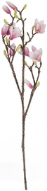 Home4you Bouquet Magnolia In Garden H90cm White/Violet 83865