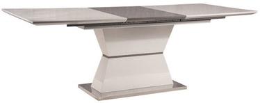 Pusdienu galds Signal Meble Muskat White/Grey, 1600x900x760 mm