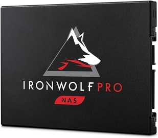 Seagate Ironwolf Pro 125 960GB