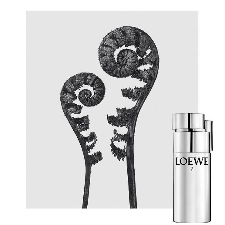 Loewe 7 Plata 100ml EDT