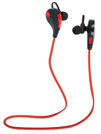 Austiņas Forever BT BSH-100 Red/Black, bezvadu