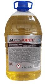 Logu tīrītājs Autoserio, 4 l, ziemas