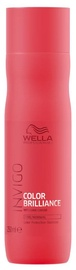 Šampūns Wella Invigo Color Brilliance Vibrant Color For Fine And Normal Hair, 250 ml