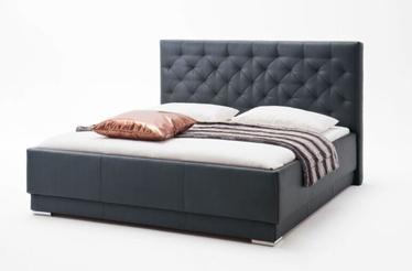 Кровать Meise Möbel Pisa, черный, 200x160 см