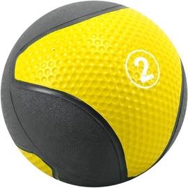 SMJ Medical Ball 2kg BL029