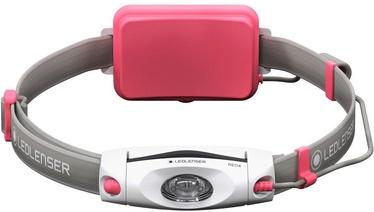 Ledlenser NEO4 Headlight Pink