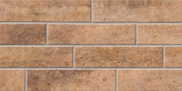Flīzes SN Brick Brown 30x60cm