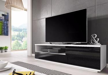 TV galds Cama Meble Muza White/Black, 1380x400x410 mm
