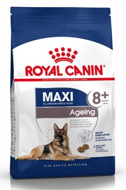 Сухой корм для собак Royal Canin SHN Maxi Ageing +8 15kg