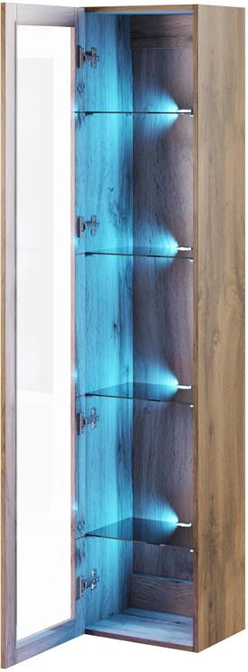 Cama Meble Vigo 180 Glass Case Wotan Oak