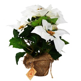 Mākslīgie ziedi Verners Artificial Flowers Poinsettia
