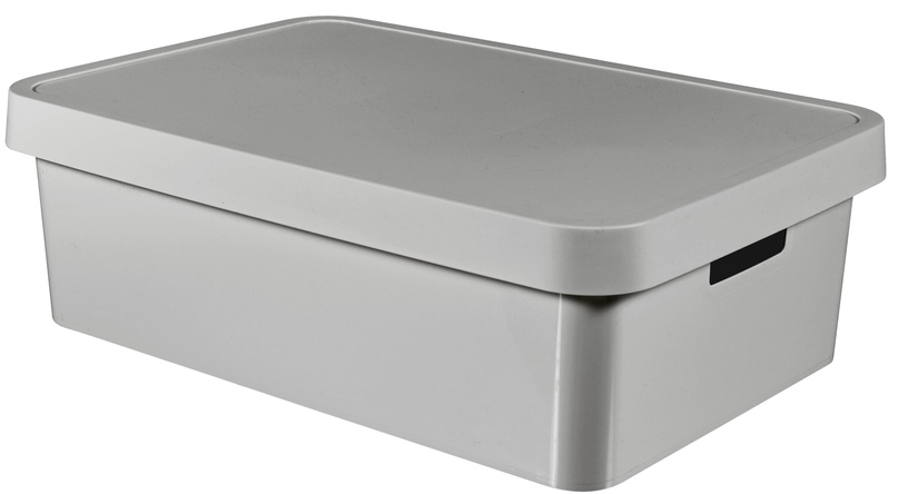 Curver Box With Lid Infinity 30L Gray