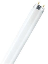 Osram Lumilux Lamp 30W G13