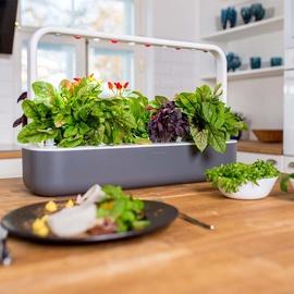 Click & Grow Smart Home Garden 9 Dark Grey
