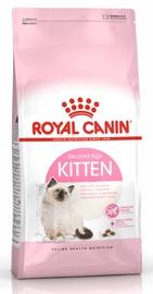 Royal Canin FHN Kitten 400g