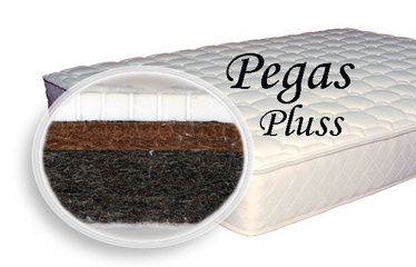 Matracis SPS+ Pegas Pluss, 70x140x10 cm
