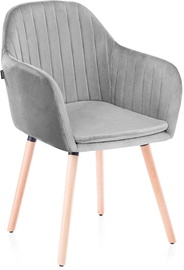 Homede Lacelle Chairs 2pcs Silver