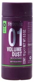 Salerm Volume Dust Matifying Powder 10g