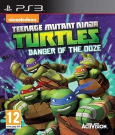 Teenage Mutant Ninja Turtles: Danger Of The Ooze PS3