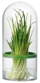 Tescoma Sense Herb Keeper