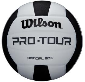 Bumba Wilson Pro Tour, 5