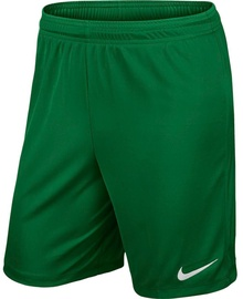 Nike Men's Shorts Park II Knit NB 725887 302 Green M
