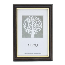 SN Photo Frame 21x29.7cm Gold Brown
