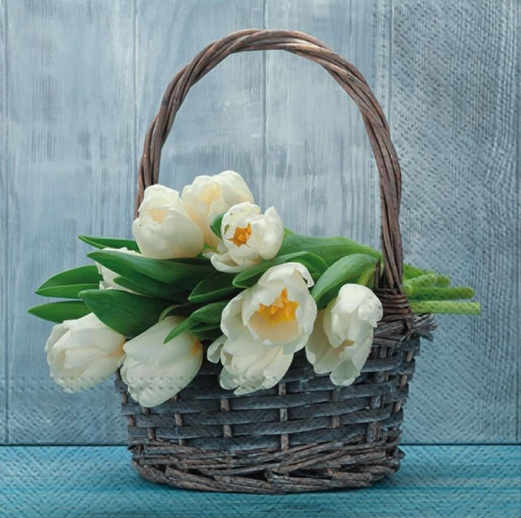 Paw Decor Collection Tulips In The Basket Napkins 33x33cm