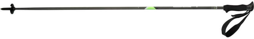 Elan Skis CarbonRod Black/Green 130cm