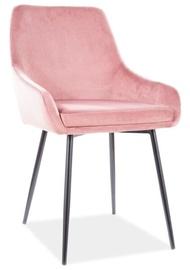 Ēdamistabas krēsls Signal Meble Modern Albi Velvet, rozā