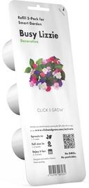Gudrā dārza sēklas Click & Grow, balzamīne, 3 gab.