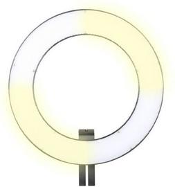 Кольцевая лампа Falcon Eyes